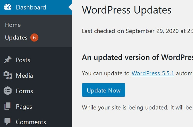 Website Maintenance WordPress Core